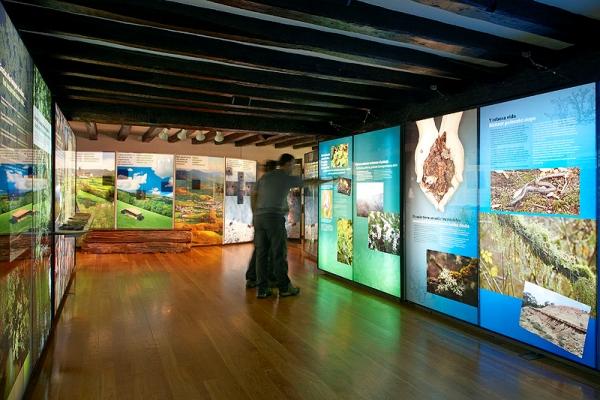 museo-tecnostand